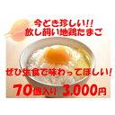 卵 たまご 産地直送 放し飼い卵 かぐやひめ 70個入 生食用卵 九州産福岡県産 ……