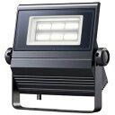 ECF0685N/SA1/2/2.4/DG1 岩崎電気 LED投光器 レディオック フラッド ネオ 60W 超広角タイプ 昼白色タイプ ダークグレイ LED