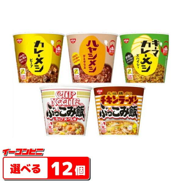 (沖縄・離島除く) 日清カレーメシ・ハヤシメシ・ぶっこみ飯6食入選べる2ケース(12個)