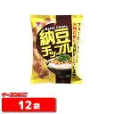 【送料無料(沖縄・離島除く)】リスカ 納豆チップル 48g 1ケース(12袋)