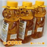 【送料無料】クマさんの容器に入ったカナディアンハニーはちみつ 750g x 3本 蜂蜜 カナダ産ハチミツ カークランド 《》【RCP】