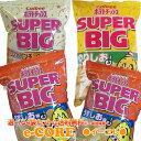 ※送料無料 選べる4種類 ポテトチップス スーパービッグ大袋...