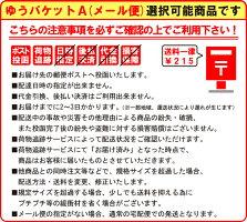 パイロット万年筆カクノKAKUNOホワイトボディ(FKA-1SR)【ゆうパケットA選択可】