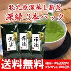 【送料無料】【2017新茶】静岡牧之原産 荒茶作り深蒸し茶1,000円ポッキリパック【RCP】