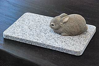 PetSmart pet ( Wed ) feels good! 20 cm x 30 cm G623 surface rough finishing