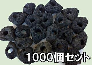 【1個=91円!】 【1000個+100個】黒い溶岩石 (穴あき)溶岩でできたフラワーポット(溶岩鉢)【もう1個サービス中!】※形状お任せになります。