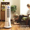 冷風機 冷風扇 扇風機 冷風 機 冷風扇風機 おすすめ 氷 おしゃれ 首振り 水タンク スリム 保冷タンク タワー coldy RF-T1801 タワーファン