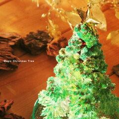 マジッククリスマスツリー/マジックツリー/MAGIC CHRISTMAS TREE/【ラッピング無料】葉が生える...
