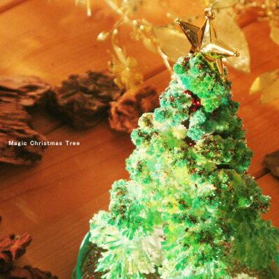 マジッククリスマスツリー2011