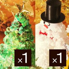 マジッククリスマスツリー/マジックツリー/MAGIC CHRISTMAS TREE/葉が生える不思議なツリー/X'm...