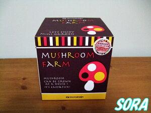 自宅で簡単にできる栽培キットです!!2012年版 マッシュルーム ファーム シイタケとエリンギ2...