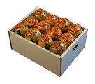 国産バレンシアオレンジ4kg進物包装