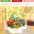 敬老の日 花【花かご ギフト】4種の花で作る季節の花かごギフト敬老の日