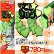 【育苗資材】【家庭菜園】【ポイント5倍】デコきゅう 星・ハートの型セット