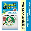 【クーポン配布中】住友化学園芸 殺虫剤 オルトランDX粒剤 1kg 動...