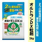 【動画解説あり】【住友化学園芸】【殺虫剤】オルトランDX粒剤 1kg