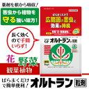 【期間限定クーポン配布中】住友化学園芸 殺虫剤 GFオルトラン粒剤 1kg