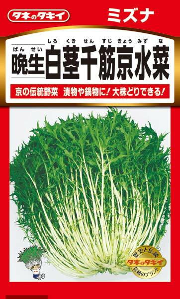 水菜【タキイ種苗】