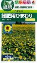 タキイ種苗 緑肥 ひまわり 緑肥用ひまわり60ml入(9平方メートル撒けます) メール便対応 (B07-005)