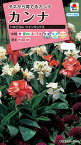 【クーポン配布中】タキイ種苗 花種 カンナ トロピカル ツインミックス メール便対応 (B06-026)