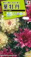 【メール便対応】【タキイ種苗】【花種】葉牡丹 さんご混合(FHB619)