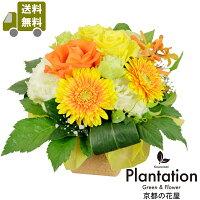 季節のお花を使った『ふんわり』『まーるい』アレンジメント