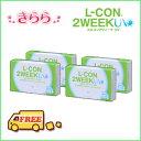 L-con_2week_04