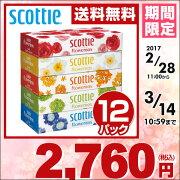 日本製紙 クレシア スコッティ ティッシュペーパー フラワー ボックス ティシュ ペーパー まとめ買い