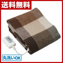 電気ひざ掛け毛布 (140×82cm) 本体丸洗い可能 YH...