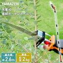 リョービ(RYOBI) チェンソー CS-2502 616700A