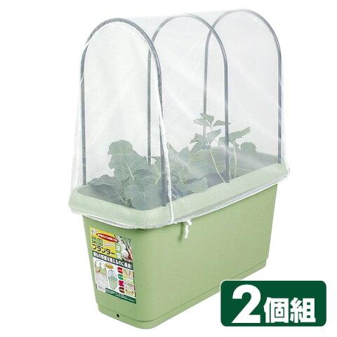 菜園プランター650&支柱・防虫ネットセット(2個組) GP-90 グリーン プランター 害虫 家庭菜園 ガーデニング グリーンパル(GREENPAL) 【送料無料】