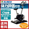 【あす楽】 アルインコ(ALINCO) エアロマグネティックバイク AF6200+フロアマット お買い得セット AF6200M エクササイズバイク フィットネスバイク 【送料無料】