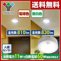 山善(YAMAZEN)LEDミニシーリングライト(センサー付)昼白色相当白熱電球60W相当830ルーメンMLC-S11N