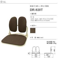 DUOREST(デュオレスト)DRシリーズ座椅子DR-920TNBNブラウン