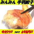 中華専門店みんみんの手羽餃子5本入り【手羽】【餃子】【中元】【のし】