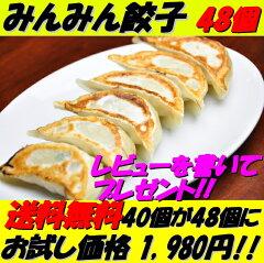 デイリーランキング1位獲得!!レビューを書くで48個で1980円!【送料無料】餃子 レビューを書く...