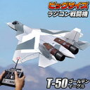 ビッグサイズ戦闘機【T-50:ラジコンタイプ】