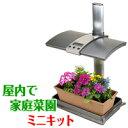 屋内で家庭菜園ができるミニキット【アーバンガーデン/Urban Garden】