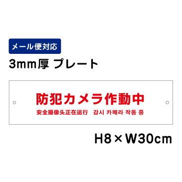 防犯カメラ作動中 24H SECURITY SYSTEM 外国語表記 (赤文字) /H8×W30cm プレート 看板プレート 商品番号:ATT-004