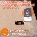 京都西川 シングルロングサイズカシミヤ毛布 (150cm×210cm)オールカシミヤ