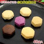 新垣ちんすこう48個入(小亀6色詰合せ)