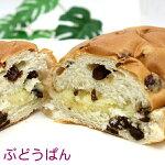 ぶどうぱん(オキコパン)