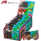 【グアムチョコレートがポイント10倍&送料無料!】グアムマカダミアナッツチョコミニパック18袋セット(グアムお土産)