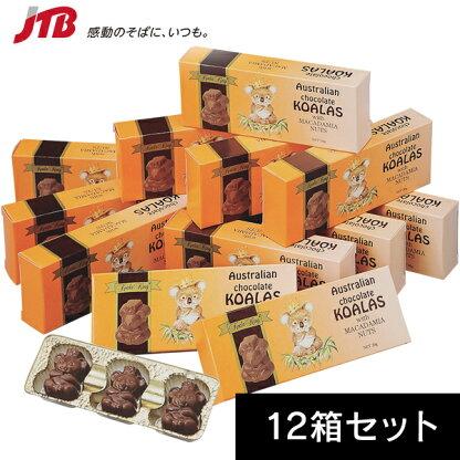 Koala King(コアラキング)マスコットコアラ ミニチョコ 12箱セット