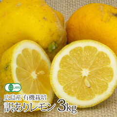 【送料無料】 広島産 有機栽培訳ありレモン 【3kg】【国産】【無農薬】