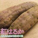 【有機栽培】 紅はるか 500g 【鹿児島産】【無農薬・無化学肥料】