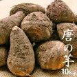 【特別栽培】 唐の芋(里芋) 10kg 【岐阜産】【無農薬・無化学肥料】