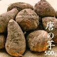 【特別栽培】唐の芋(里芋) 500g 【岐阜産】【無農薬・無化学肥料】