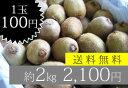 美容と健康にビタミンC豊富なキウイフルーツをどうぞ!!オーガニックキウイ「2kg」『1玉55円〜...
