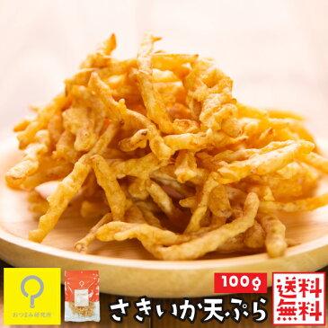 さきいかの天ぷら 100g 送料無料 おつまみ研究所【1663】